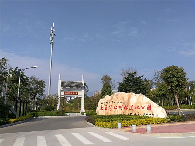 大亞灣紅樹林濕地公園.jpg